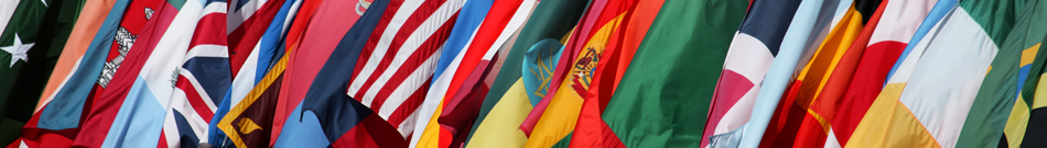 flags header 135